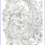 Printable Complex Coloring Pages Cool Images Plex Coloring Pages For Kids At Getcolorings