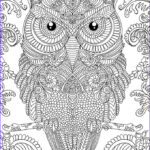 Printable Complex Coloring Pages Elegant Photos Owl Coloring Pages For Adults Free Detailed Owl Coloring