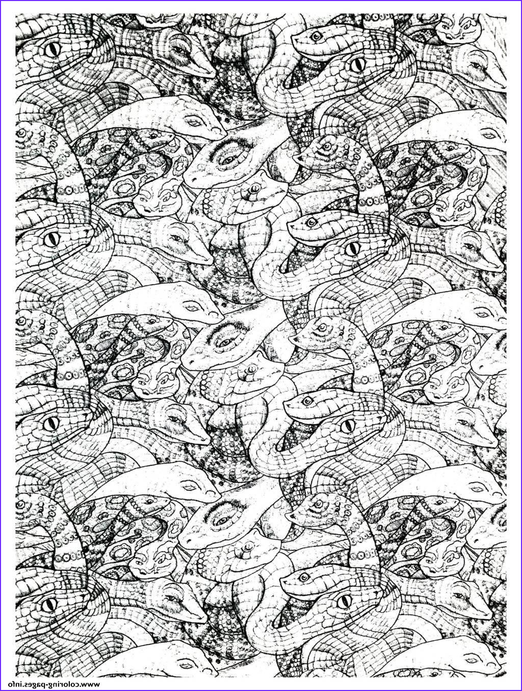 adults snakes plex printable coloring pages book 3802