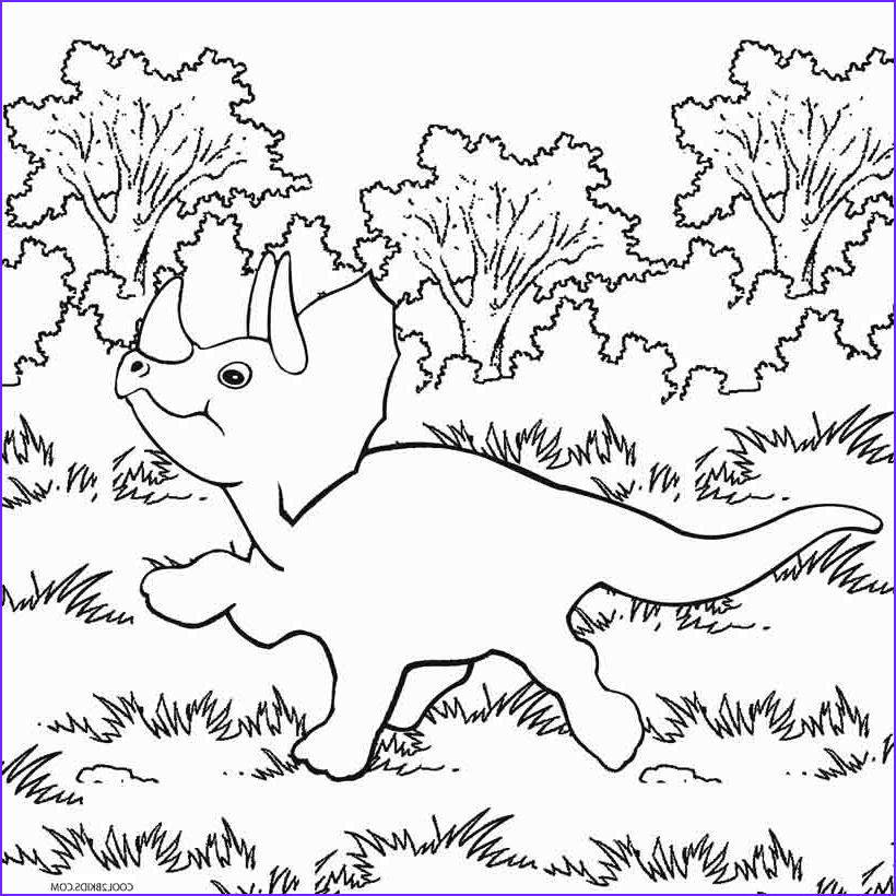 Printable Dinosaur Coloring Pages Inspirational Image Printable Dinosaur Coloring Pages for Kids