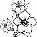 Printable Flower Coloring Pages Beautiful Stock Free Printable Flower Coloring Pages For Kids Best