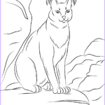 Printable Free Coloring Pages Beautiful Photos Cute Caracal Coloring Page