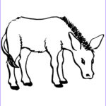 Printable Free Coloring Pages Luxury Image Free Printable Donkey Coloring Pages For Kids