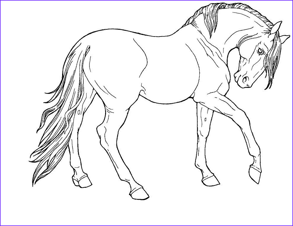 Printable Horse Coloring Pages Inspirational Images Horse Print Out Coloring Pages Free Printable Coloring