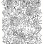 Printables Free Coloring Pages Cool Gallery Bird Mandala Coloring Pages To Print