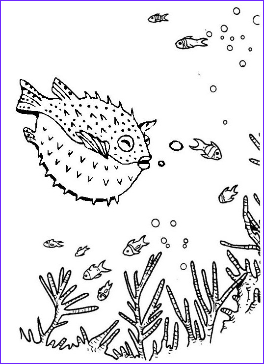 Puffer Fish Coloring Page New Image Amazing Puffer Fish In Deep Sea Coloring Page Of Blowfish