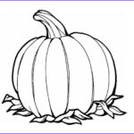 Pumpkin Coloring Pages Cool Images Awesome Pumpkins Fruit Coloring Page Download & Print