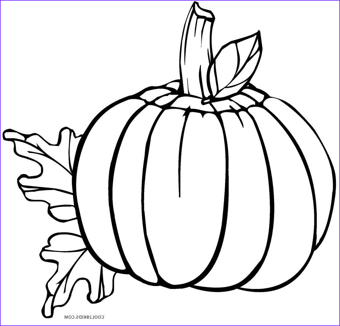 Pumpkin Coloring Pages Inspirational Photography Free Printable Pumpkin Coloring Pages for Kids