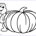 Pumpkin Coloring Pages Luxury Images Free Printable Pumpkin Coloring Pages For Kids
