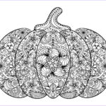 Pumpkin Coloring Pages New Images Free Adult Coloring Pages Pumpkin Delight Free Pretty