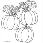 Pumpkin Coloring Pages To Print Beautiful Image Free Printable Pumpkin Coloring Pages For Kids