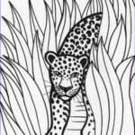 Rainforest Coloring Page Best Of Stock Rain Forest Trees Coloring Page Coloring Home