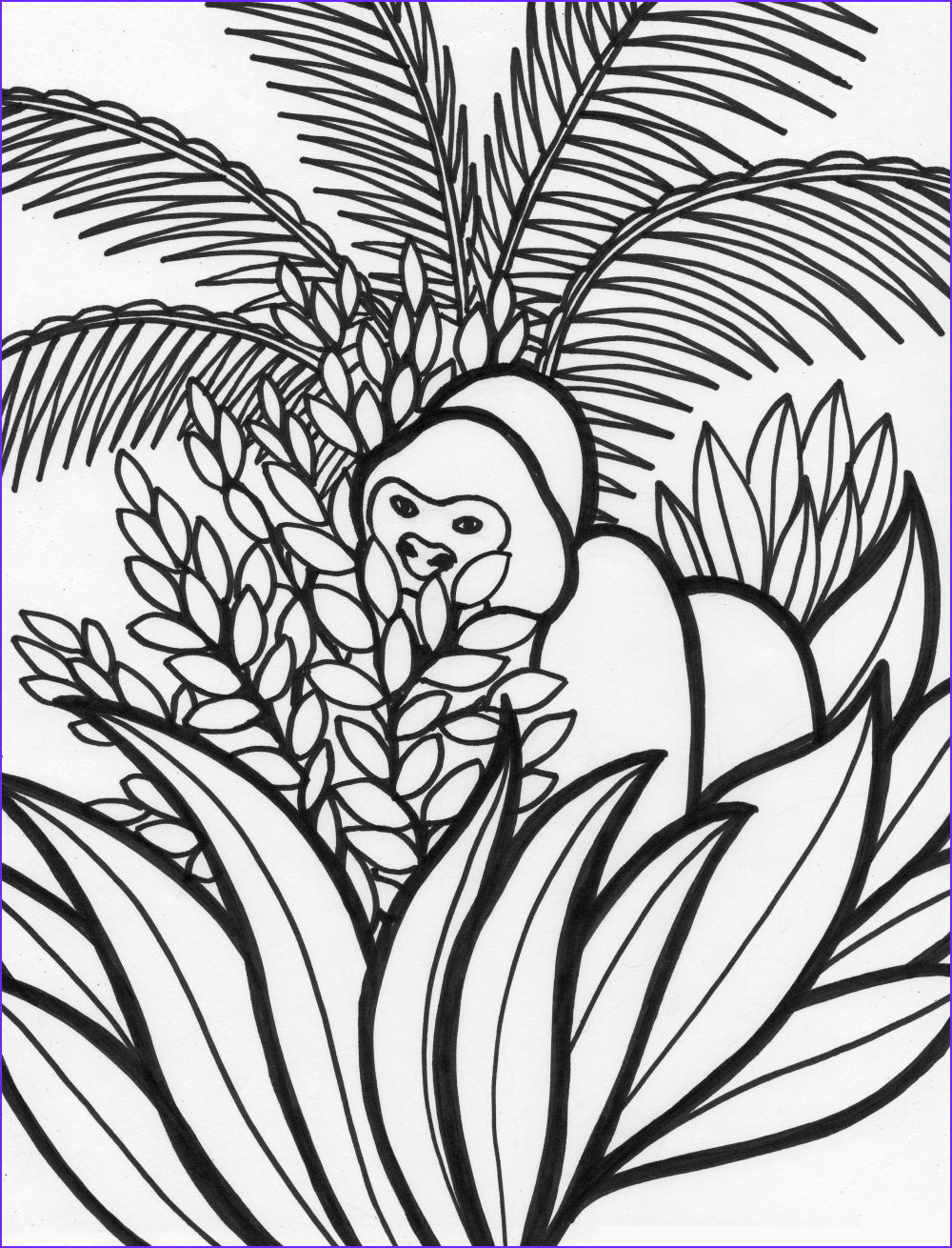 rainforest coloring pages endangered species coloring pages for free 13