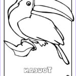 Rainforest Coloring Page Inspirational Collection Rainforest Animals Coloring Pages 3