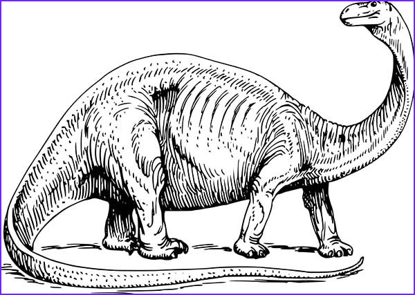 Realistic Dinosaur Coloring Pages Beautiful Photography Realistic Picture Apatosaurus Coloring Pages