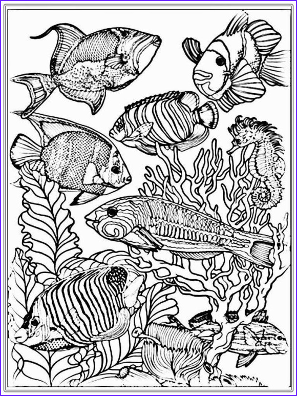 sweet fish coloring pages for adults