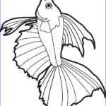 Realistic Fish Coloring Pages Beautiful Stock Free Printable Realistic Fish Coloring Page For Kids 2