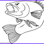 Realistic Fish Coloring Pages Inspirational Image Realistic Fish Coloring Pages