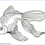 Realistic Fish Coloring Pages Inspirational Photos Coloring Pages Gold Fish Kids Coloring Pages Realistic