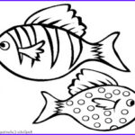 Realistic Fish Coloring Pages New Collection Aquarium Fish Printable Coloring Sheet