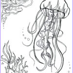 Realistic Fish Coloring Pages Unique Photos Realistic Jellyfish Drawing At Getdrawings