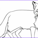 Realistic Fox Coloring Pages Beautiful Image Fox Coloring Pages