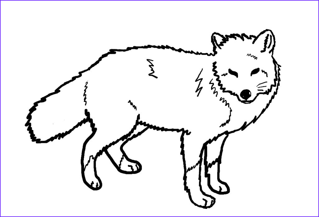 Realistic Fox Coloring Pages Beautiful Photography Free Printable Fox Coloring Pages for Kids