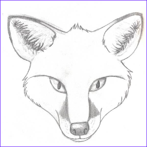 Realistic Fox Coloring Pages Beautiful Stock Cute Fox Coloring Pages