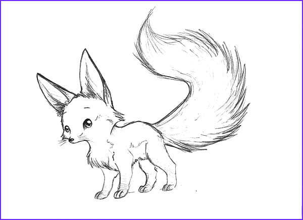 Realistic Fox Coloring Pages Best Of Images Desert Fox