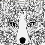 Realistic Fox Coloring Pages Elegant Image Realistic Fox Coloring Pages At Getcolorings