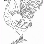 Rooster Coloring Pages Best Of Photos Free Rooster To Print