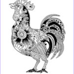 Rooster Coloring Pages Cool Image Rooster Coloring Coloring For Adults