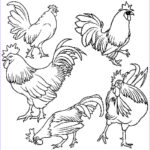 Rooster Coloring Pages Elegant Photography 43 Rooster Coloring Page Printable Rooster Coloring Pages
