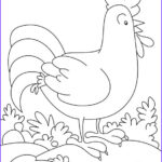 Rooster Coloring Pages Unique Photos 76 Best Images About Rooster & Chicken Patterns On