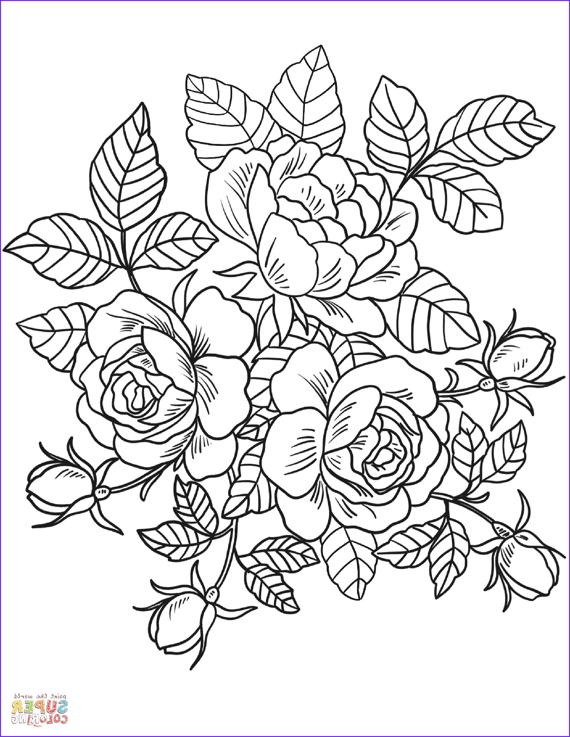 Roses Coloring Pages for Adults Best Of Photos Roses Flowers Coloring Page