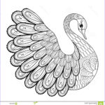 Royalty Free Coloring Pages Beautiful Gallery Hand Drawing Artistic Swan For Adult Coloring Pages In