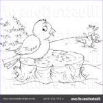 Royalty Free Coloring Pages Best Of Photography Coloring Page Clipart Illustration By Alex Bannykh
