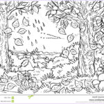 Royalty Free Coloring Pages Inspirational Photos Forest In Autumn Stock Illustration Image Of Forest