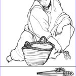 Ruth Coloring Pages Awesome Gallery 17 Best Images About Bible Story Ruth On Pinterest