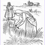 Ruth Coloring Pages Beautiful Collection 57 Best Images About Bible Ruth On Pinterest
