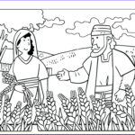Ruth Coloring Pages Beautiful Stock Fun Ruth And Boaz Coloring Pages Naomi Page Info Colouring