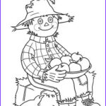 Scarecrow Coloring Page Luxury Photography 17 Best Images About Clowns & Scarecrows On Pinterest