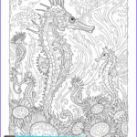 Sea Life Coloring Books Luxury Photography 9 Best Fanciful Sea Life Images On Pinterest