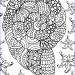 Sea Life Coloring Books Luxury Photos 332 Best Coloring Seashells & Sea Life Images On