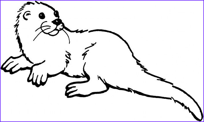 Sea Otter Coloring Page Beautiful Photos Otter Drawing Otter Drawing