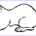 Sea Otter Coloring Page Beautiful Photos Otter This Website Has All Kinds Of Awesome Coloring