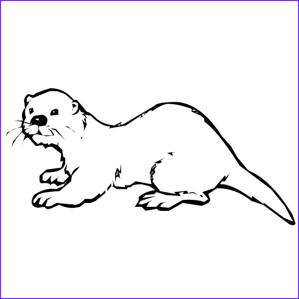 Sea Otter Coloring Page Cool Image Sea Otter Coloring Pages Coloring Pages