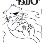 Sea Otter Coloring Page New Photography 17 Best Images About Animal Coloring Pages On Pinterest