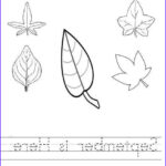 September Coloring Pages Awesome Collection September Coloring Pages September Worksheet For Kids