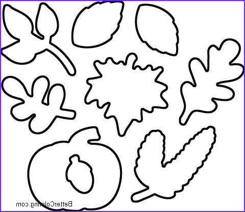 september coloring pages simple leaves